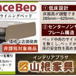 FRANCEBED 電動リクライニングベッド 情報誌SPICE